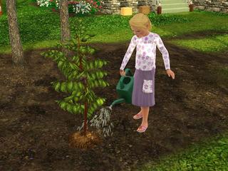 gardening_chd01.jpg